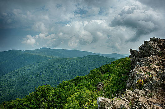 Lara Ellis - Hawksbill Mountain II